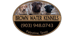 brown waterkennels
