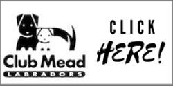 Club Mead
