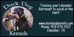 duck dog kennels