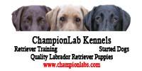 Champion Labs