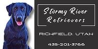 StormyRiverRetrievers